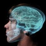 Un fallo en un congelador destruye tejidos cerebrales usados en la investigación del autismo