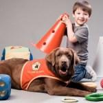 La Fundación Solidaridad Carrefour entrega 11 perros de asistencia