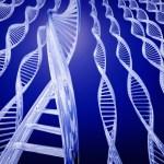Mutaciones en los genes de los TEA