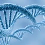 Estudios de secuenciación masiva revelan genes clave del autismo