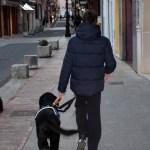 Actividad con perro de asistencia para niños con autismo en Gandía