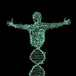 Un nuevo estudio sugiere que, algunas mutaciones del autismo no son detectadas