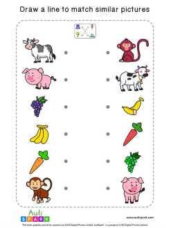 Matching Pictures Free Worksheet #03 – Match Similar Images