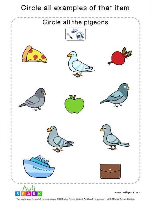 Circle The Birds 3