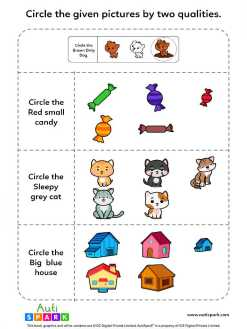 Identify Pictures By Two Qualities - Fun Worksheet #5