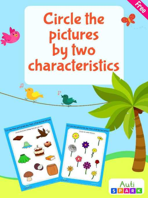 Image Sorting Workbook : Circle Pictures By Characteristics
