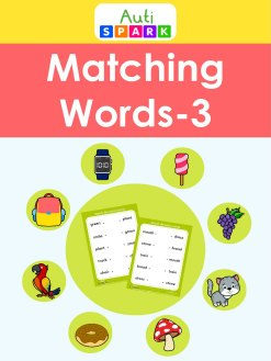 Match The Words 5 Letter Word Best letter Matching Workbook