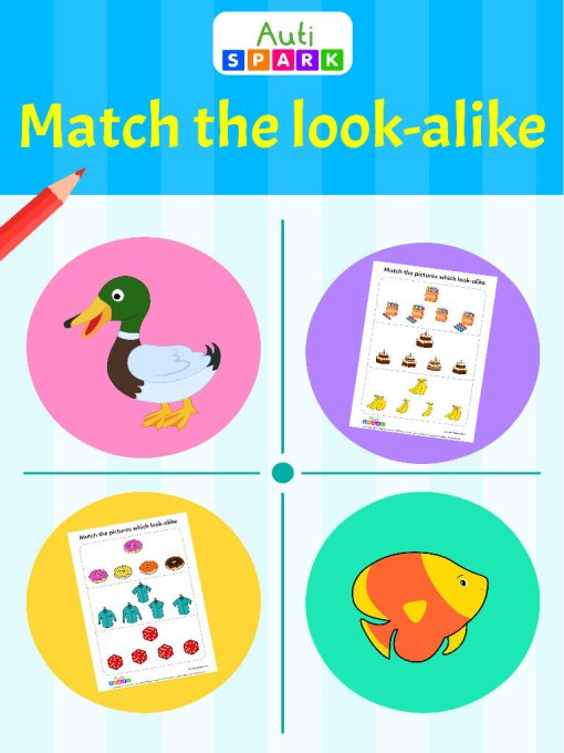 Match The Similar Pictures Matching Workbook