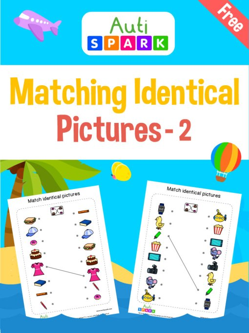 77 Match Identical Pictures 2