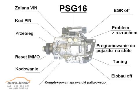 Tuning & Repair PSG-16