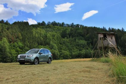 test-2017-subaru-forester-20i-lineartronic (12)
