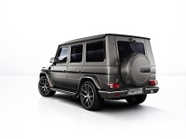 mercedes-amg-g65-special-ed_8