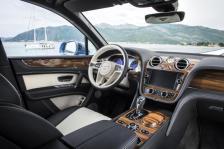 Bentley-drevo-Liquid-Amber- (2)