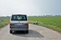 test-volkswagen-multivan-20-tdi-150-kw-4motion-dsg-BULLI- (5)