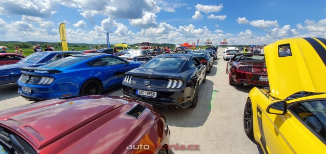mustang-riders-sprinty-2019-ford-mustang- (26)
