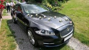 Kremowe różyczki Jaguar XJ do ślubu z kierowcą