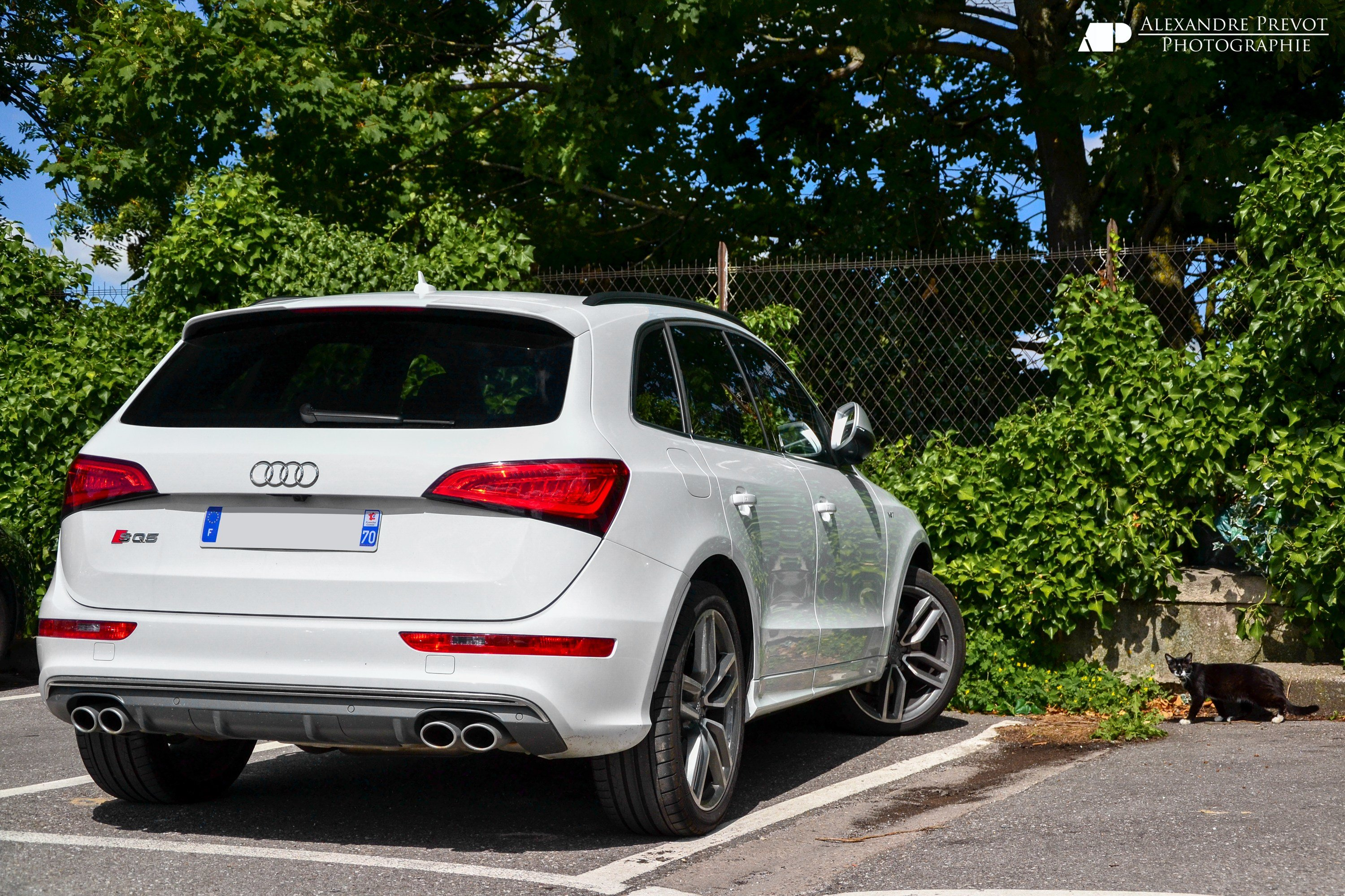 Latest New Audi Car Colour Help Please Grey White Free Download