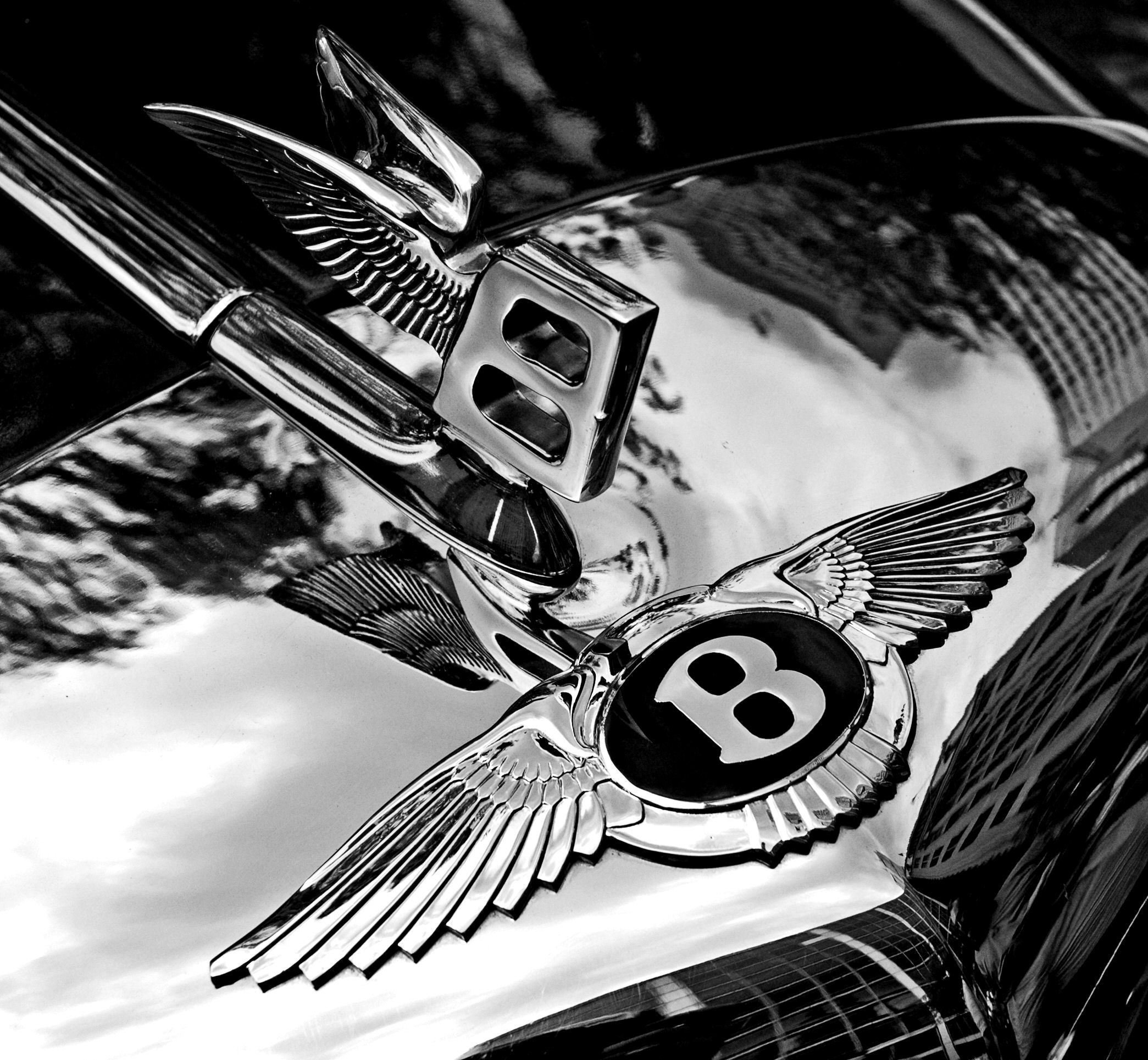 Latest File Bentley Badge And Hood Ornament Bw Jpg Wikipedia Free Download