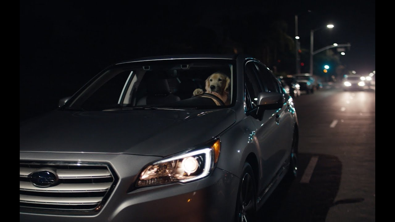 Latest Subaru Dog Tested Subaru Commercial Puppy Extended Free Download Original 1024 x 768