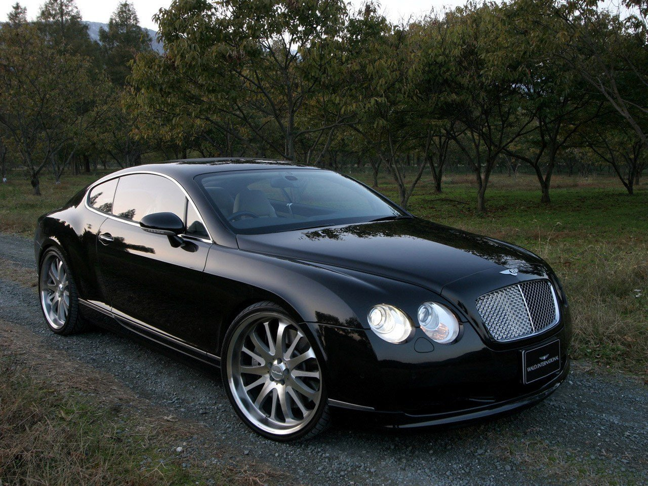 Latest Wald Bentley Continental Gt 2006 Free Download