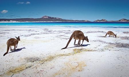 I Australien road trip