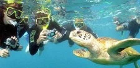 Autocamper Ferier Cairns Australien