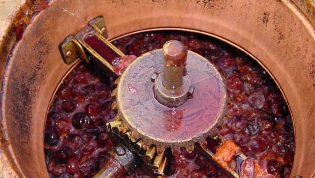 Rakija nation's wine culture exploration