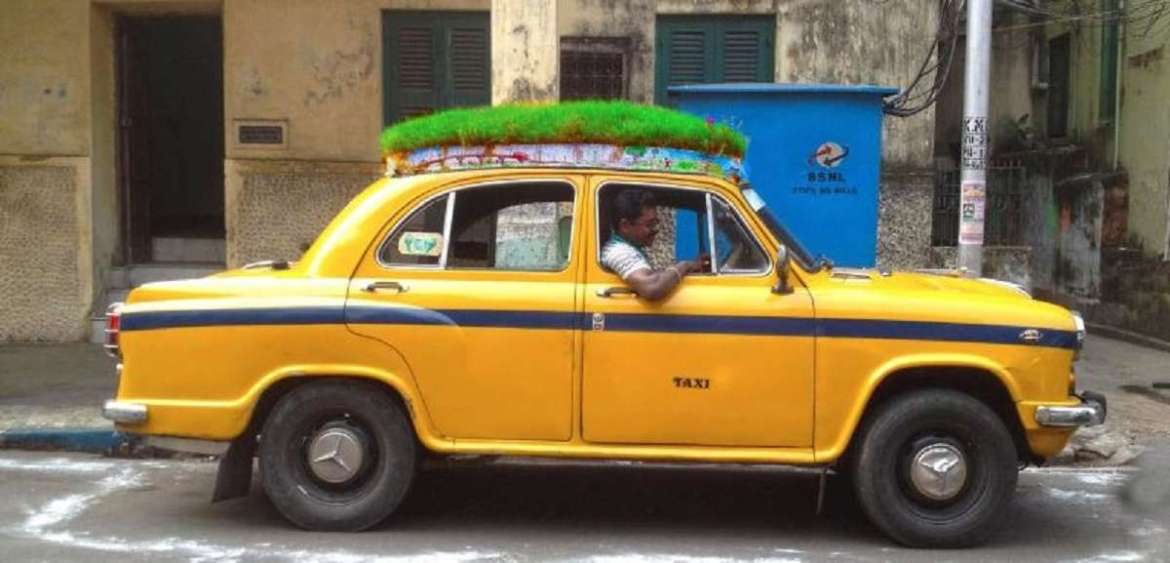 Hitch a ride on this yellow taxi, feel green