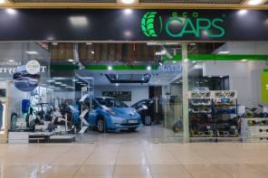 Движуха на электромобильном рынке Украины: компания ElectroCars поглотила конкурента