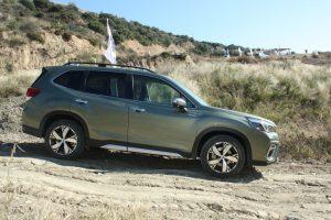 Subaru Forester e-BOXER autoholix 12