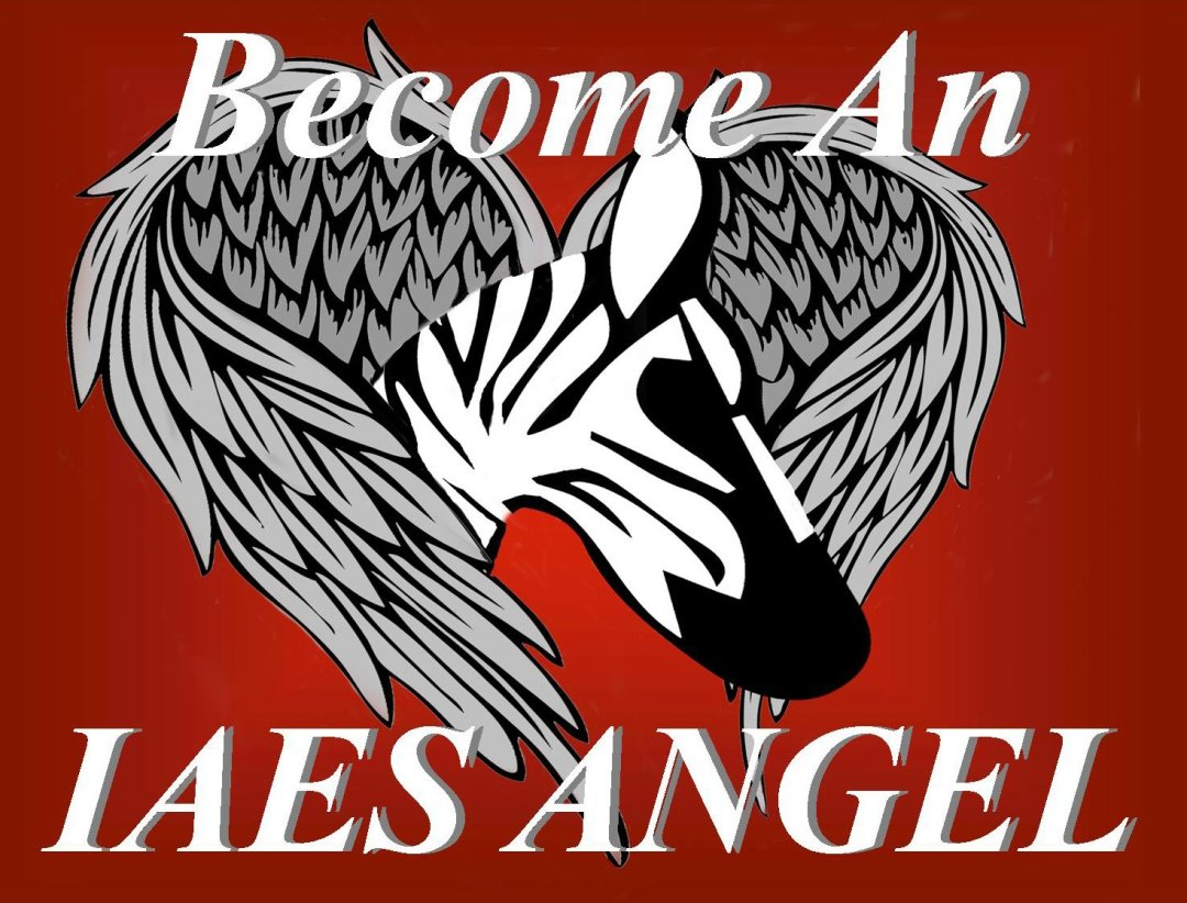 become - IAES Angel