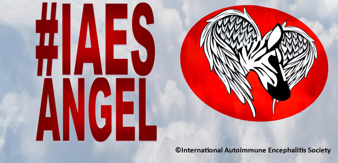 cfbp - IAES Angel