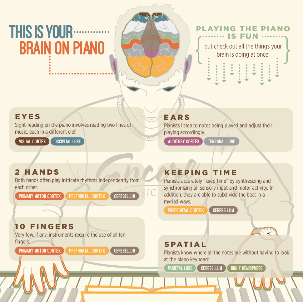 infographic piano lessons are good for you and your brain - Cognitive Exercises for AE Patients