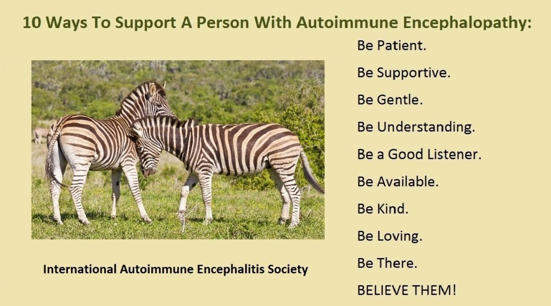 10 Way to Support AE Person pd - Memes About Autoimmune-Encephalitis