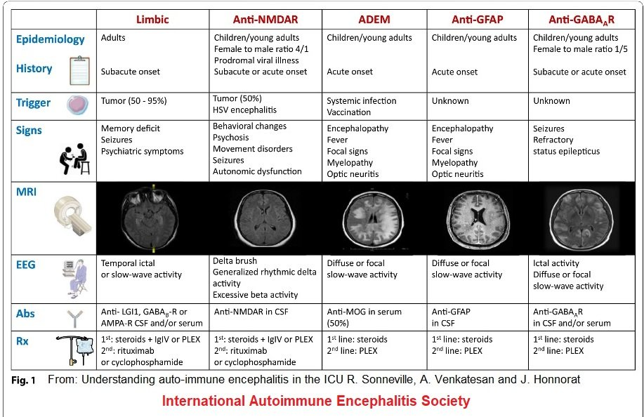 AE patient friendly chart Understanding AE in ICU R Sonneville 2 IAES permission - Memes About Autoimmune-Encephalitis