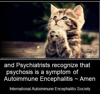 kitten psychiatrists recognize psychosis as AE 1 - Memes About Autoimmune-Encephalitis