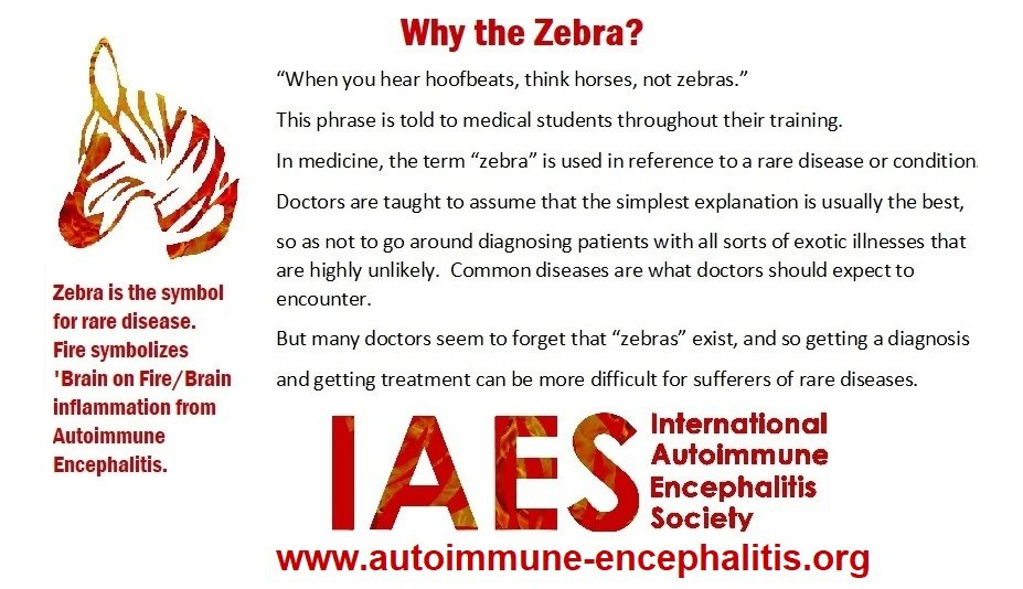 why zebra - Memes About Autoimmune-Encephalitis