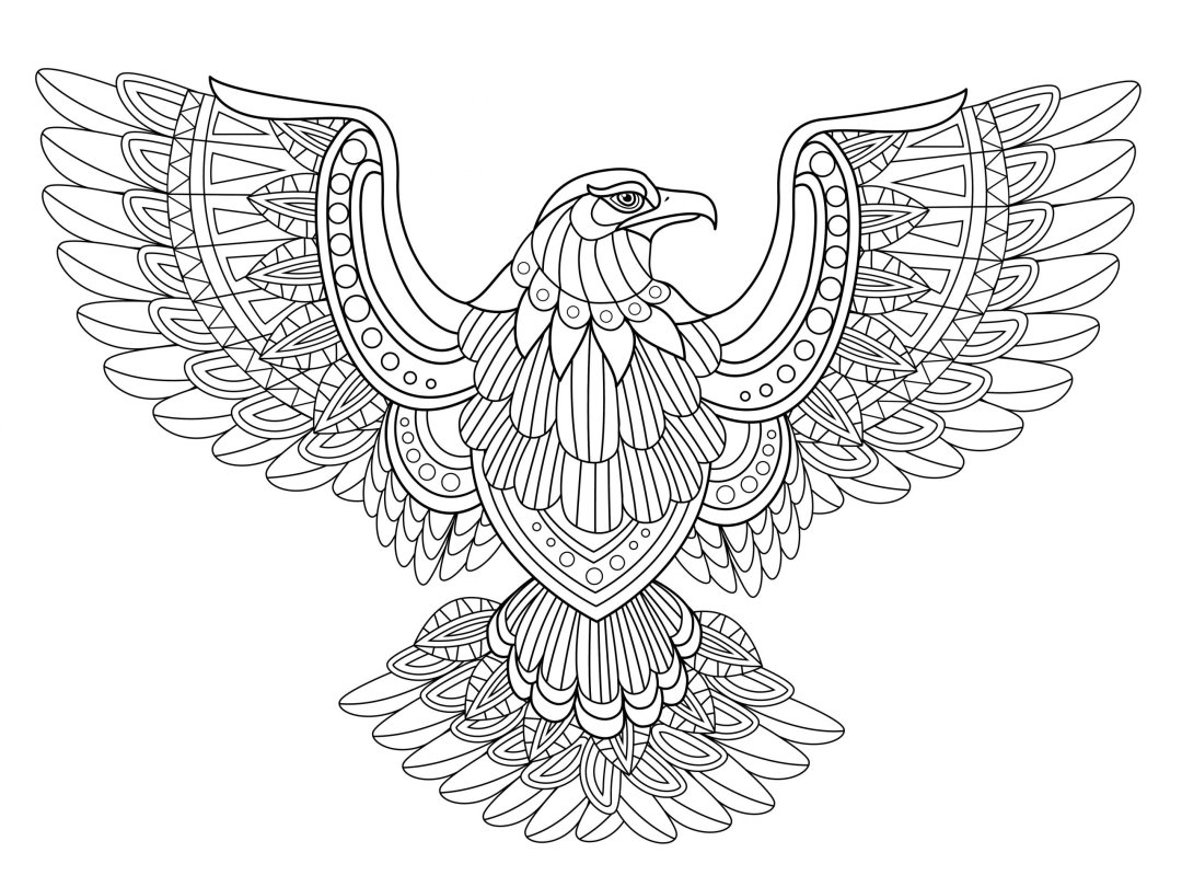 Eagle bravery scaled - Cognitive Exercises for AE Patients