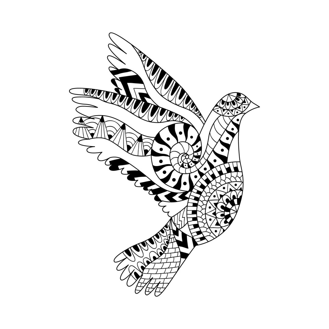 bird of peace scaled - Cognitive Exercises for AE Patients