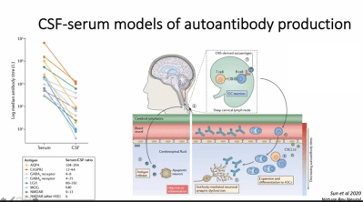 csf serum models of autoantibody production pathophysiology of AE - Autoimmune Encephalitis