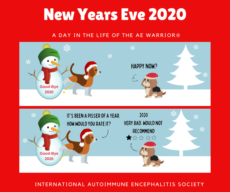 New Year 2020 A day in the Life of the AE Warrior® 12 27 20 FB - Memes About Autoimmune-Encephalitis