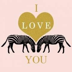 i love you_zebra