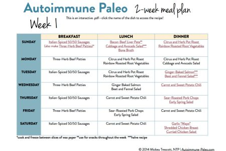 Paleo diet meal plan for weight loss pdf best free fillable forms on what primal blueprint meal plan pdf hizli rapidlaunch weight loss on what is paleo primal g r i t s pal autoimmune paleo week meal plan autoimmune malvernweather Choice Image