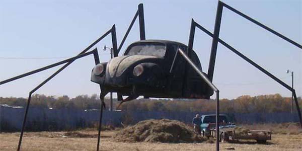 unique-beetle