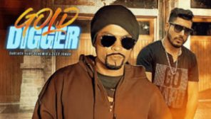 Gold Digger Lyrics – Gud Luck Ft. Bohemia