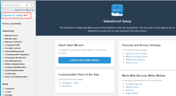 Salesforce1 Setup wizard