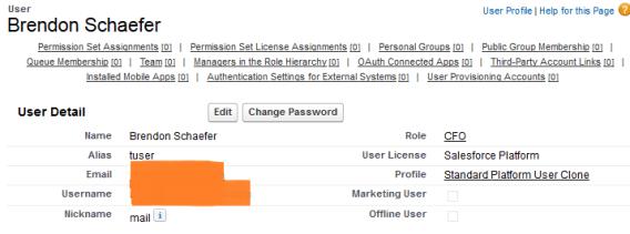 Salesforce Platform User