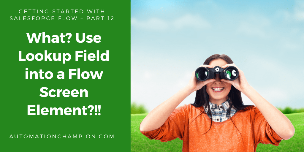 Getting Started with Salesforce Flow – Part 12 (What? Use Lookup Field into a Flow Screen Element?!!)