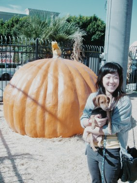 October 30th, 2011 - Mandu and me at the pumpkin patch for his very first pumpkin
