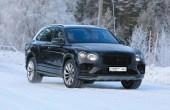 2021 Bentley Bentayga Release Date & Price